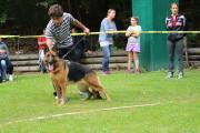 Hundeschau Aigen2015_Benjamin